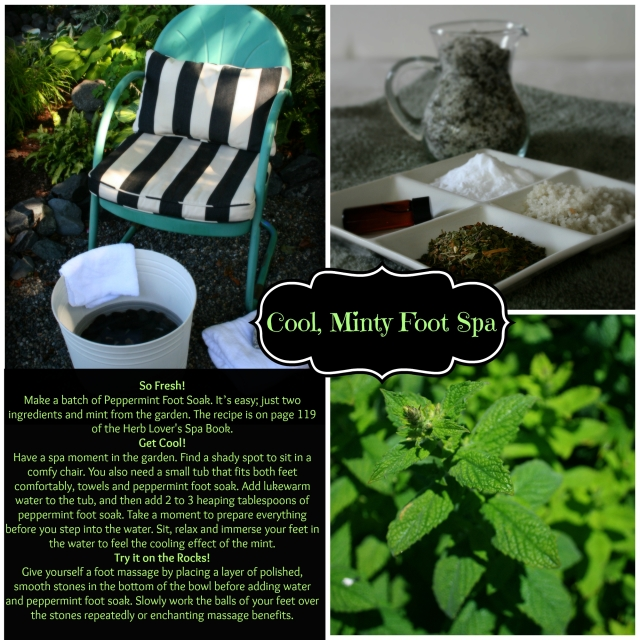 mint foot spa with type