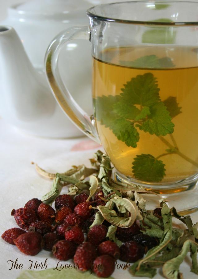 tea herb lovers
