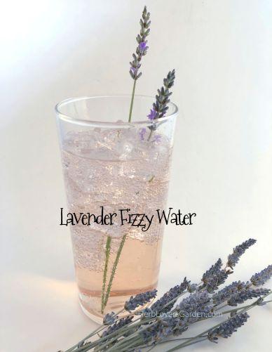 page 165 lavender soda web IMG_6324